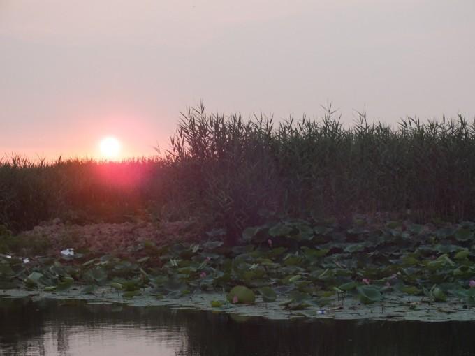 西行漫记——11天5400公里西北自驾(一)白洋淀里做渔夫